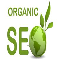 organic seo specialists